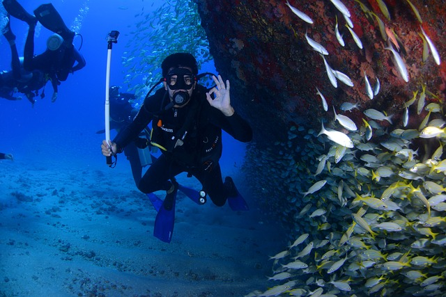 Most Watched Scuba Diving Videos